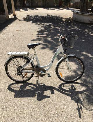 Bicicleta eléctrica MONTY e45