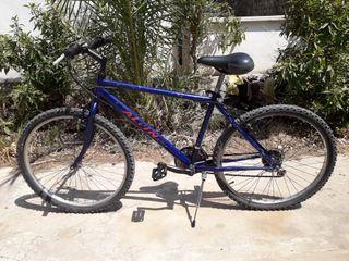 Bici BTT ALPINA