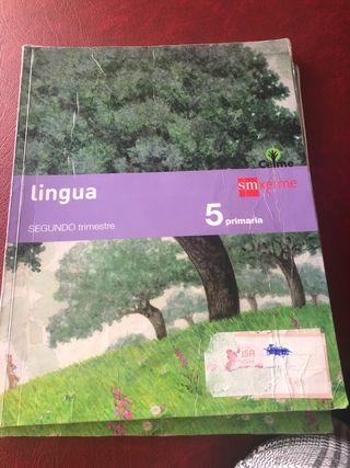 Se vende libro lingua 5 primaria