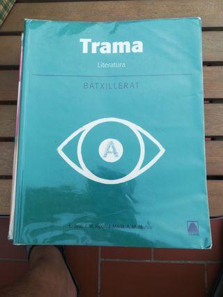 libro bachillerato literatura Trama