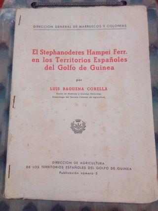 antiguo libro colonial