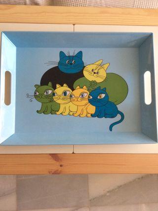 Bandeja de gatos