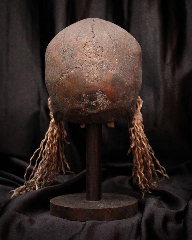 Cráneo - DAYAK - Skull (R)