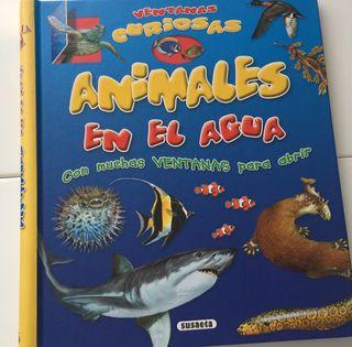 Ventanas curiosas: animales en el agua.
