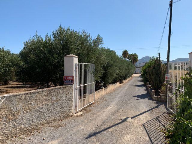 Finca Rústica con Casa (Alcudia)