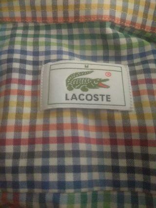 Camisa Lacoste vintage