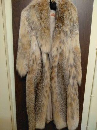 abrigo lince canadiense
