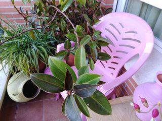 Tumbona y sillas de terraza