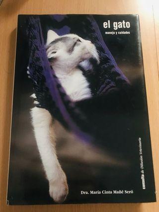Manejo y cuidados del gato