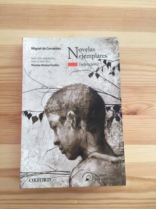Novelas ejemplares ( selección)