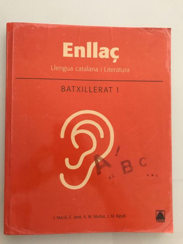 Llengua catalana i literatura, Batx 1 - TEIDE