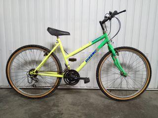 Bicicleta de Montaña Basica