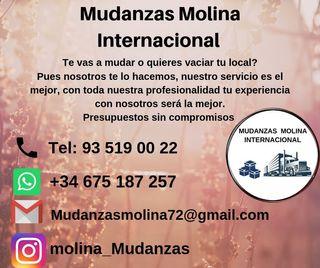 mudanzas molina internacional, profesional