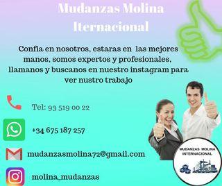 Mudanzas Molina internacional...