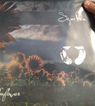 Sigur Ros Sunflower Lp