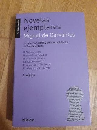 Novelas ejemplares Cervantes 9788424654719