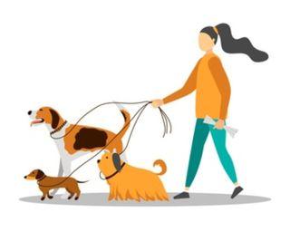 Paseadora de perros y cuidadora de animales