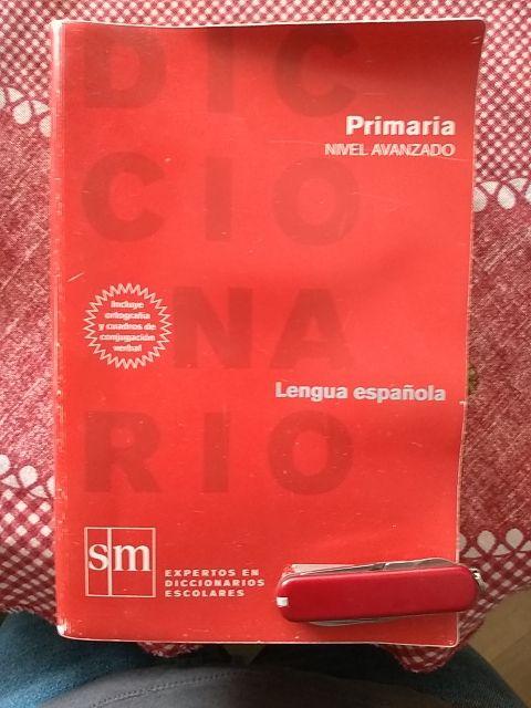 diccionario SM