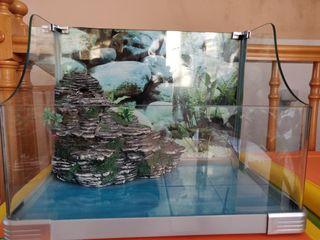 Acuario para tortugas - tortuguera de vidrio