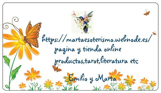 tienda y pagina online