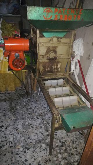 Máquina peladora de almendras