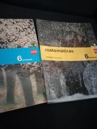 Libros Escolares sm.