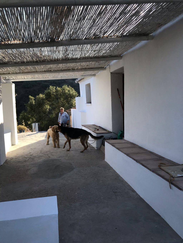 Casa en venta (Sayalonga, Málaga)