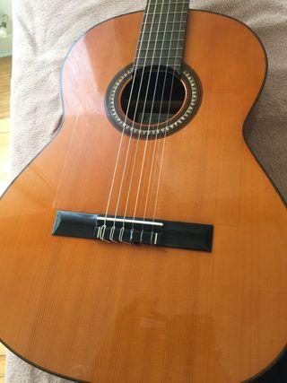 Guitarra vicente sanchis