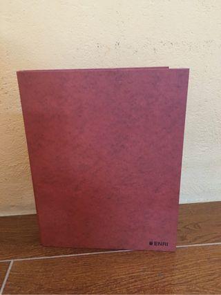 Carpeta carton plastificado