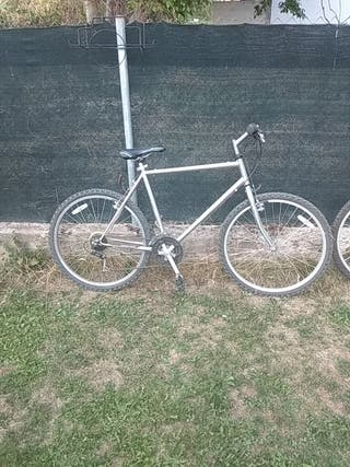 bici adulto