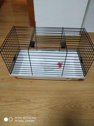 jaula, roedor