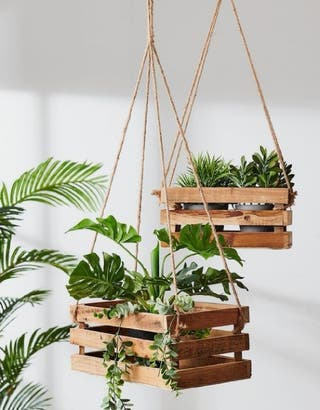 estantes para plantas