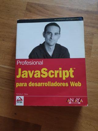 Profesional Javascript para desarrolladores Web