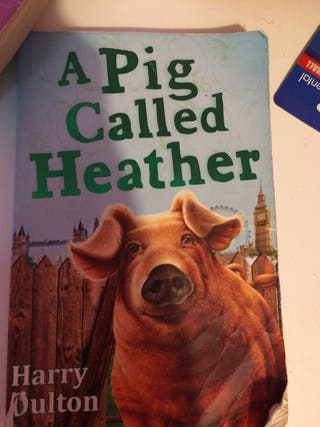A Pig Called Heather