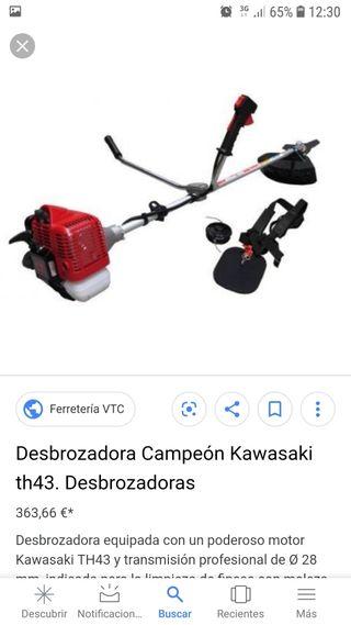 desbrozadora Kawasaki th 43 campeón