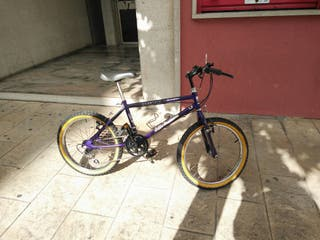 Bicicleta BH 10 marchas Shimano rueda 500mm niño