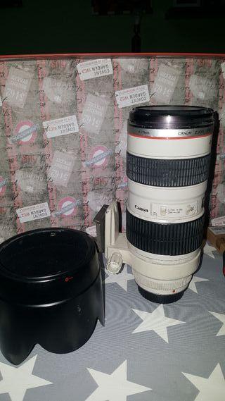 Canon 70-200 f 2.8 Ultrasonic