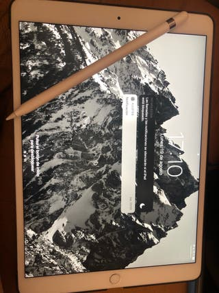 IPad Pro 10,5 pulgadas blanco + apple pencil 512gb