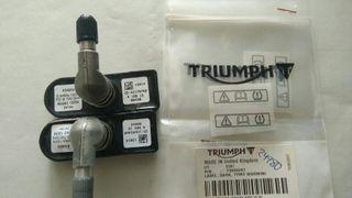 Sensores Presión TPMS Triumph