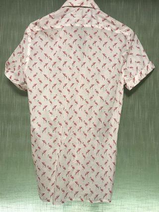 Camisa Zara hombre de segunda mano por 19 € en Valencia en