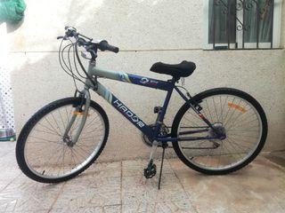 bicicleta paseo