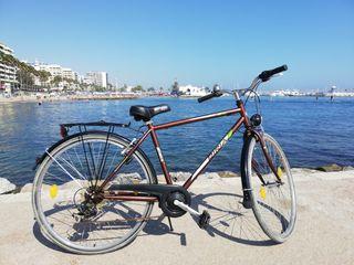 Bicicleta de paseo alemana Biria