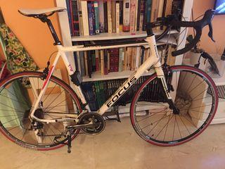 Bicicleta focus variado