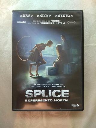 Splice Experimento Mortal . DVD