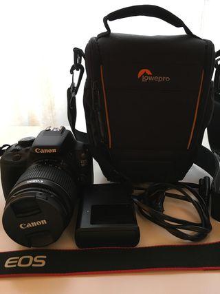 Canon reflex EOS 100D