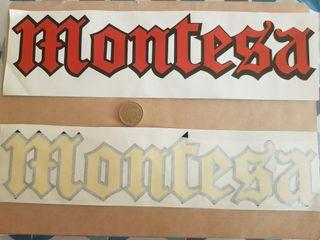 Adhesivo Montesa