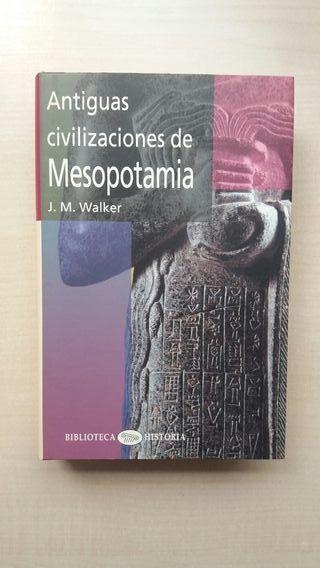 Libro Antiguas Civilizaciones de Mesopotamia.