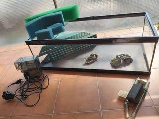 Kit completo tortuguera