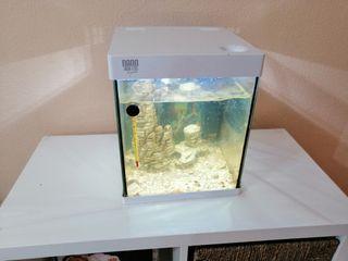 nano acuario con led