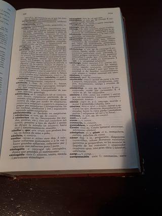 Diccionario Español-Latín